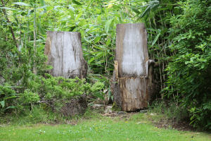 Seats-at-Leckmelm-Shrubbery-and-Arboretum