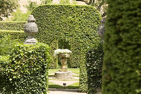 Hedging at Les Jardin du Manoir d'Eyrignac